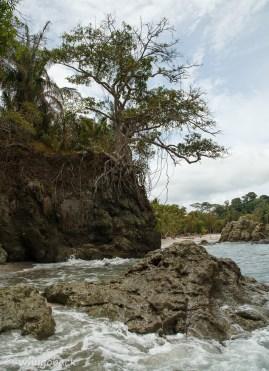 Parque Nacional de Manuel Antonio