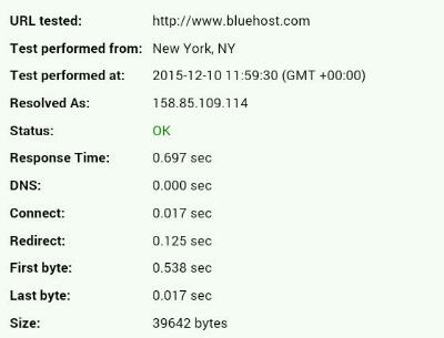 bluehost review performance test.