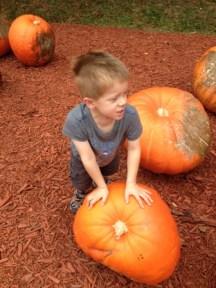 Pushing Pumpkins