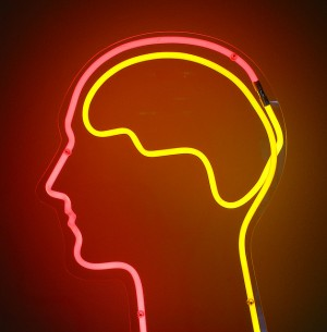 teenage brains wired for awesome stuff