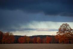 Stormy Sky, Fall Color