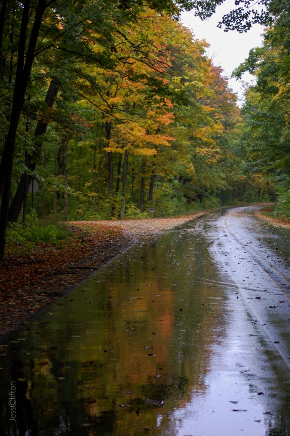 Fall_Foliage_Reflection