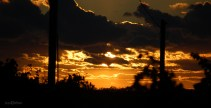 old_mission_peninsula_sunset_silhouette