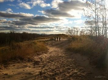 Dune Field Friends Clouds & Shadows