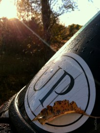 UP_Camping_Sticker_Sunflare