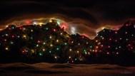 Iced Christmas Lights