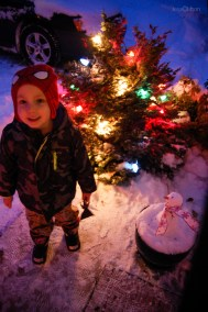 Jackson Christmas Lights