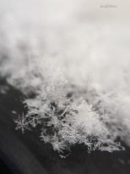 Snowflake Pile Macro
