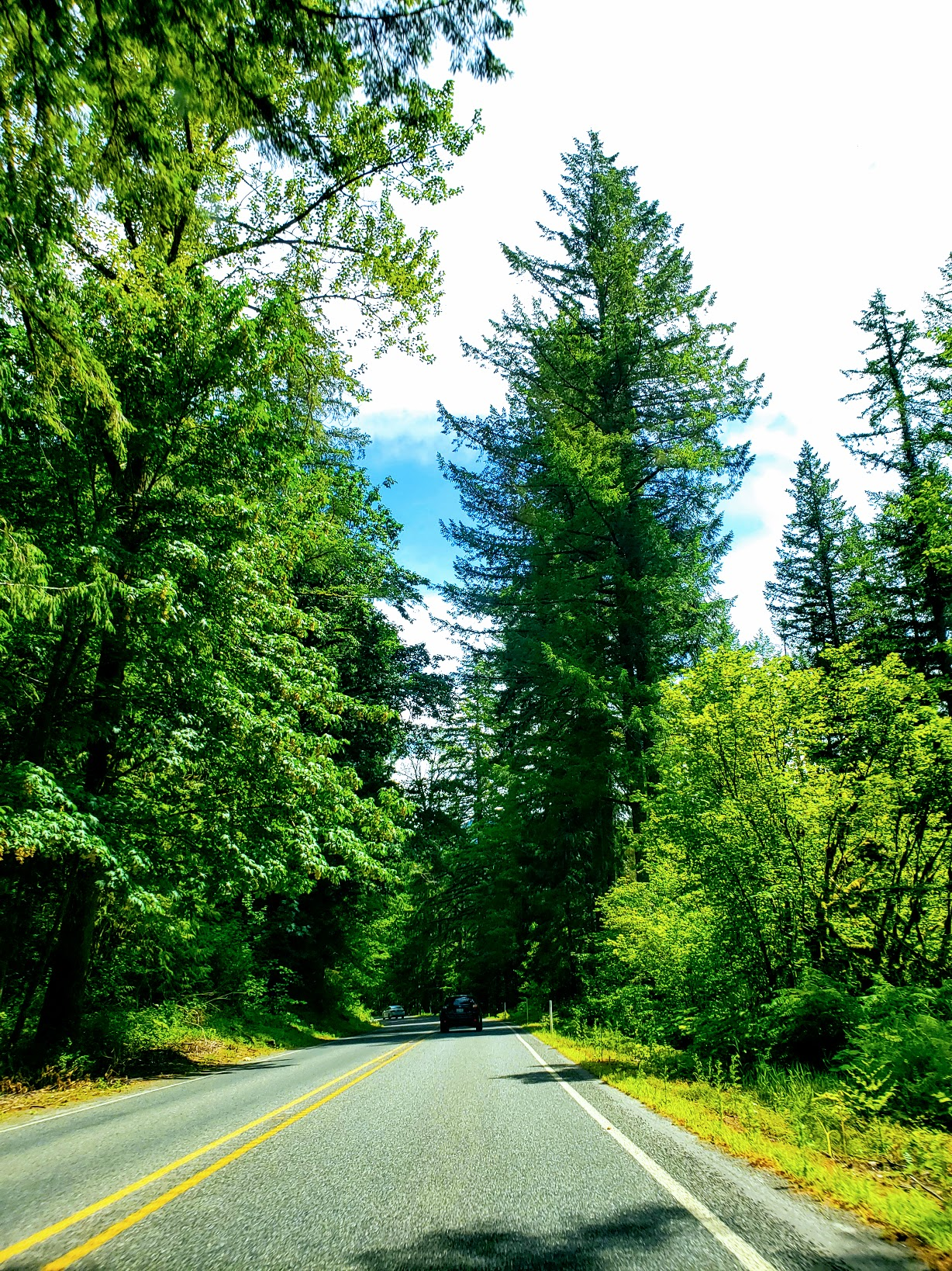 15 tips to help you plan a summer road trip.