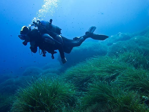 Scuba Diving Myths - You will Become Claustrophobic