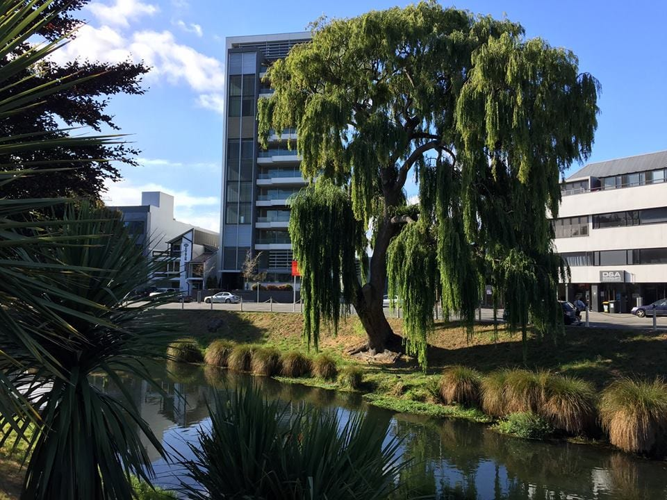 Buildings in Downtown Christchurch, New Zealand