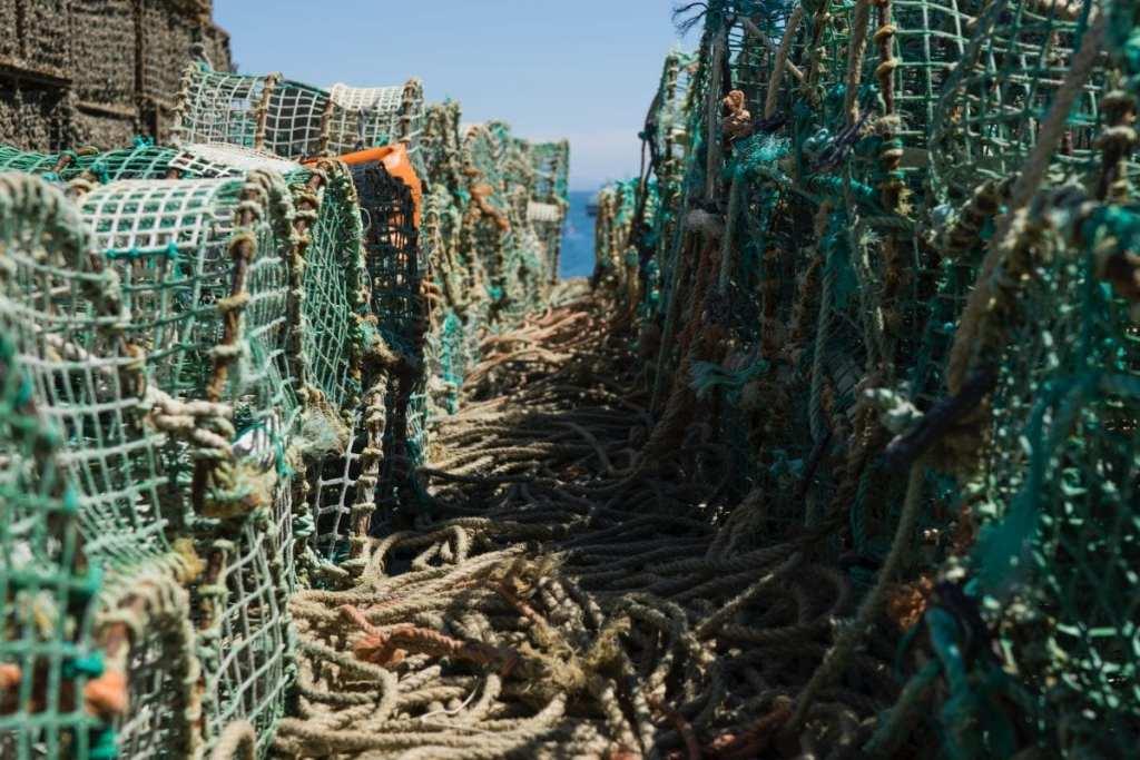 Foodie Dream Trip to Maine: Lobster Rolls
