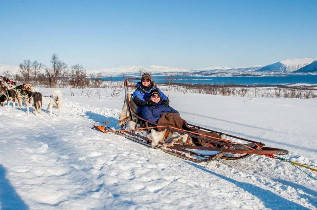 Dogsledding in Norway - Planning a Winter Trip to Norway