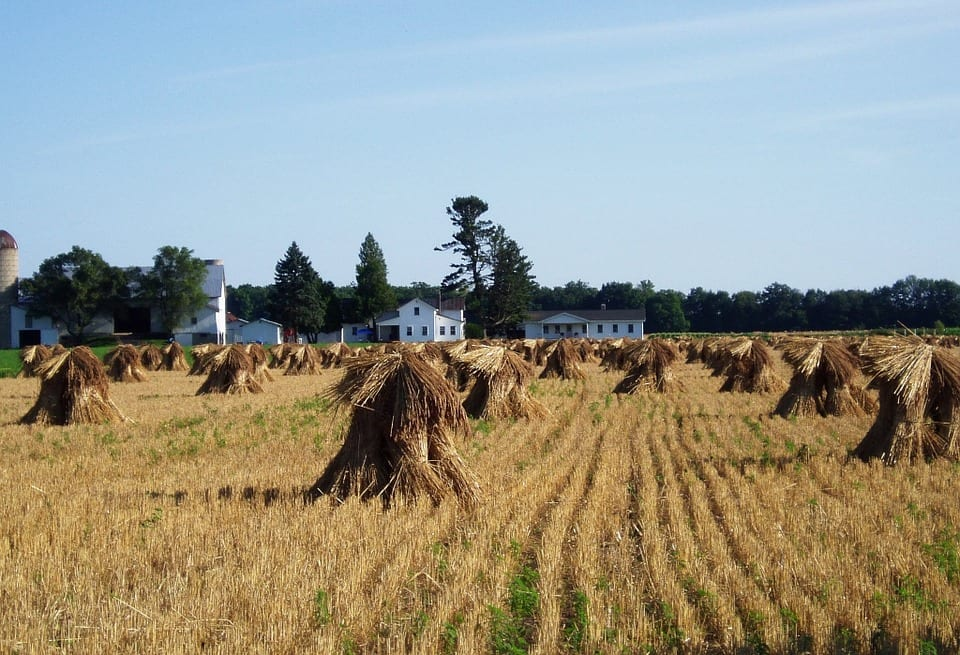 Where to experience traditional Amish food