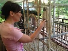 Papuga Tortuga zaczyna niepozornie...