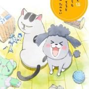 Video Promosi Anime Inu to Neko Docchimo Katteru to Mainichi Tanoshii Ungkap Seiyuu, Staf, Informasi Debut 10