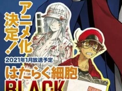 Anime Cells at Work! Code Black Ungkap Seiyuu dan Staf 25