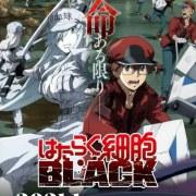 Video Promosi Pertama Anime TV Cells at Work! Code Black Dinarasikan oleh Kenjiro Tsuda 15
