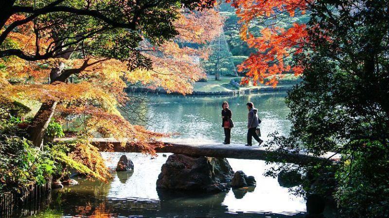 Taman Indah Rikuguen dan Furukawa yang Dilapisi Sejarah di Tokyo 1
