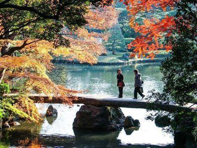 Taman Indah Rikuguen dan Furukawa yang Dilapisi Sejarah di Tokyo 93