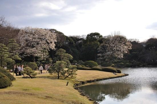 Taman Indah Rikuguen dan Furukawa yang Dilapisi Sejarah di Tokyo 2