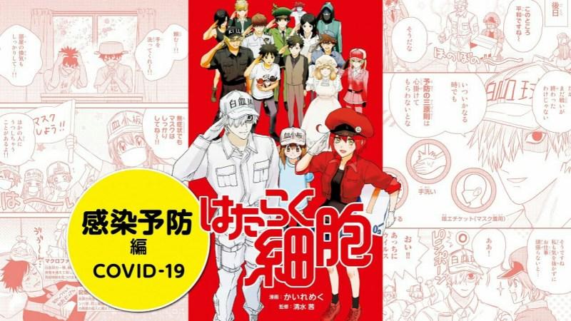 Kementerian Kesehatan Jepang Mengepos Chapter COVID-19 dan Chapter Vaksin Baru dari Manga Cells at Work! secara Gratis dan Global 1