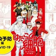 Kementerian Kesehatan Jepang Mengepos Chapter COVID-19 dan Chapter Vaksin Baru dari Manga Cells at Work! secara Gratis dan Global 19