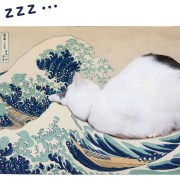Produk Balok Kayu Paling Ikonik di Jepang Untuk Kucing 11
