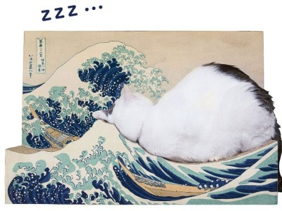 Produk Balok Kayu Paling Ikonik di Jepang Untuk Kucing 23