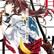 Manga Shin Ikki Tousen/Battle Vixens Mendapatkan Anime TV untuk Tahun Depan 10