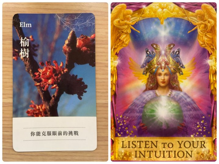 2021032404 Angel Answers Oracle Cards Divination by Luc