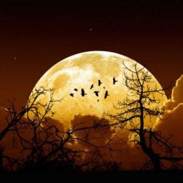 La luna sera mas grande de lo habitual..