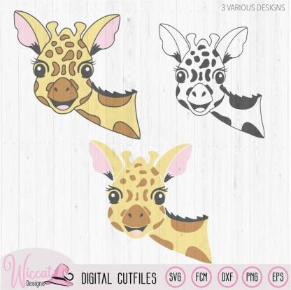 Funny Giraffe face svg, zoo animal svg,