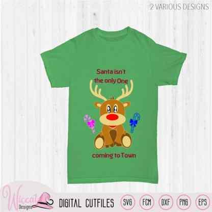 Baby reindeer Merry Christmas