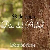 28 de junio, día del árbol