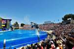 Free admission for military to Sea World and other parks this summer
