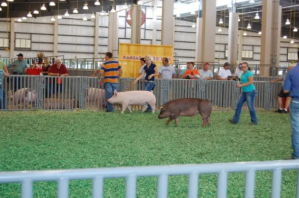 Kansas State Fair discounts
