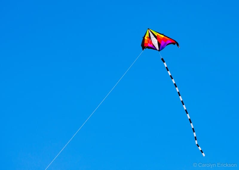 Still Eating Kites After All These >> Kite Flying Events In The Wichita Area