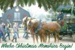 Free family holiday activities at Prairie Pines Christmas Tree Farm in Wichita, KS