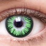 Chic Green Envy