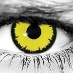 WickedEyez Angelic Yellow