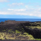 Pico: Vineyard to Coast