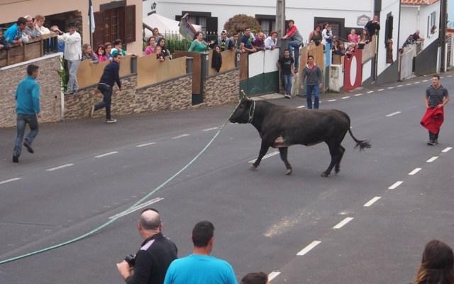 Terceria: Bull Run