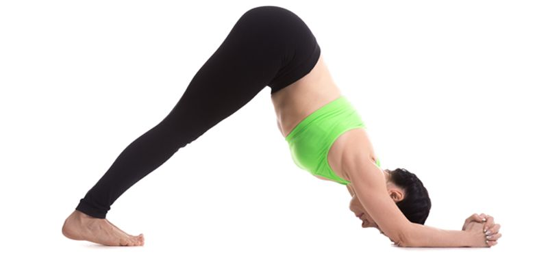 dolphin asana to lose weight belly