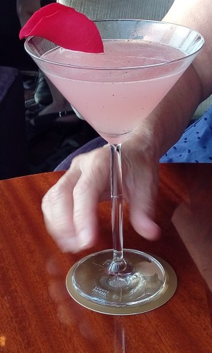 cocktail anne