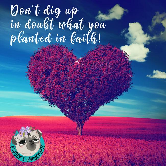 Planted-in-faith