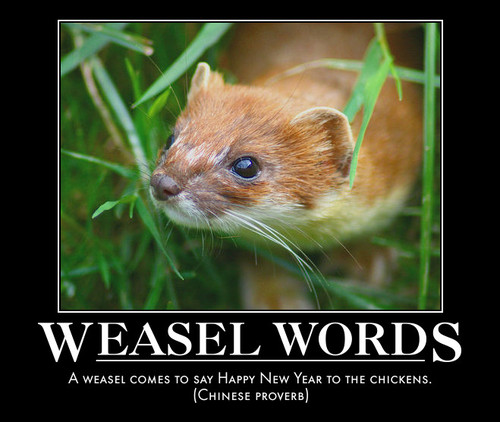 Image result for lolcat weasel