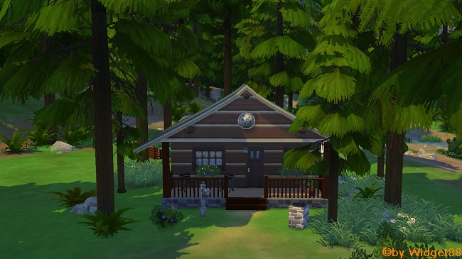 Hut at the Forest