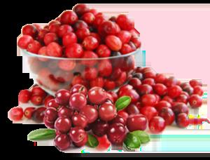 cranberry-obat-anyang-anyangan