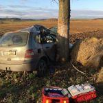 Renault uderzył w drzewo. Na miejscu LPR